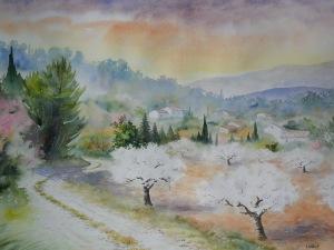 Cerisiers en fleurs près de Pernes (43 x 60 cm)