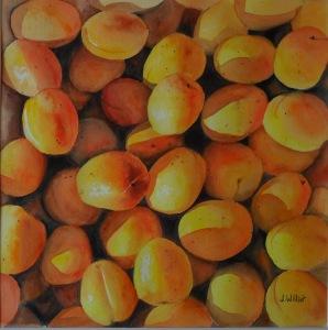Les abricots (30 x 30 cm)