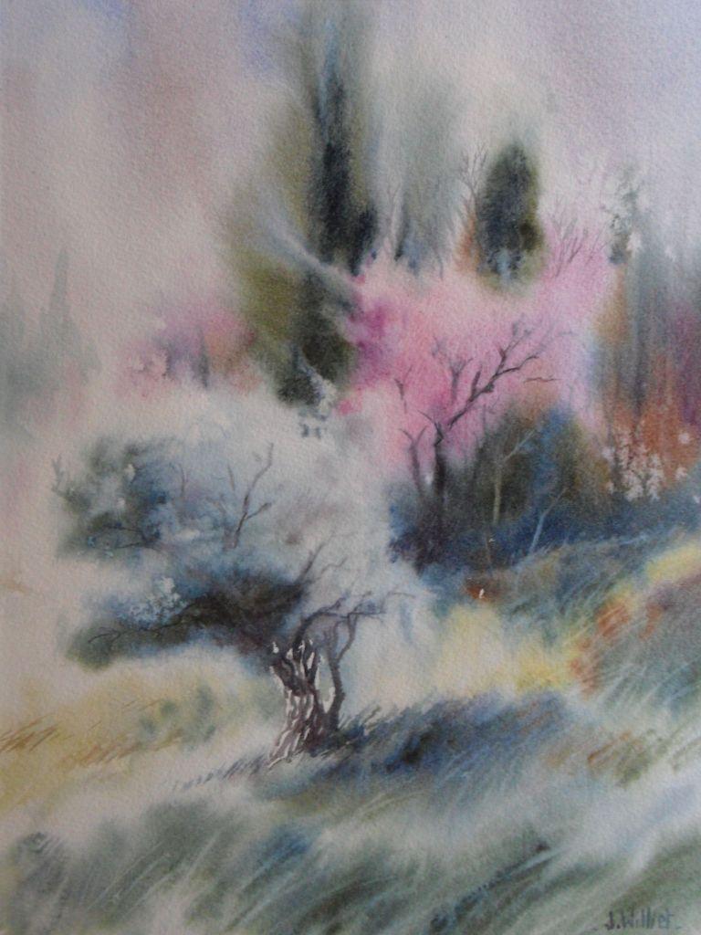 L'olivier et l'arbre de Judée