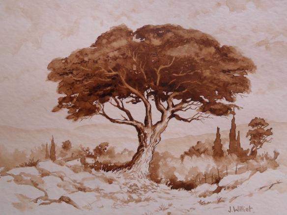 Le vieux pin au bord du chemin - J. Williet