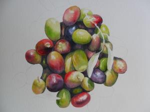olives en cours