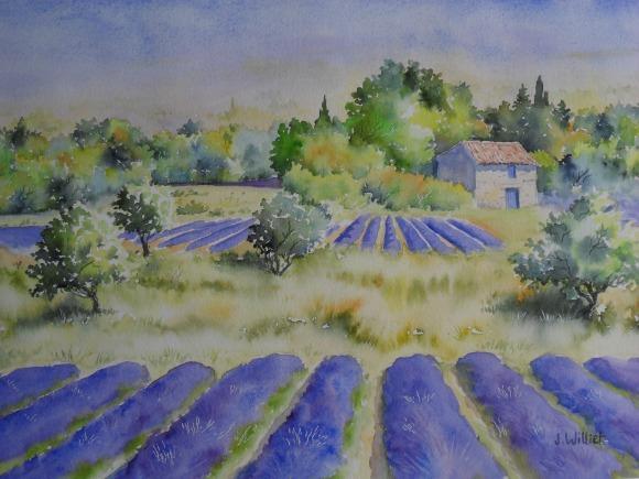 La saison des lavandes* (30 x 40 cm)