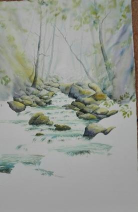 rivière en cours