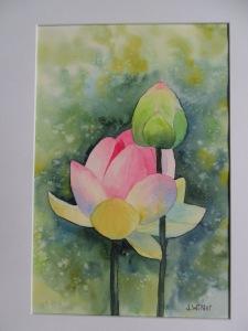 Fleur de lotus et son bourgeon