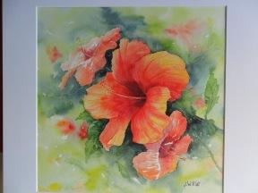 Hibiscus de Martinique (30 x 30 cm)