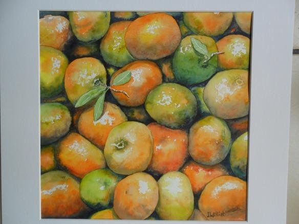 Les mandarines tropicales